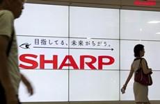 Hãng điện tử Sharp ghi nhận mức lỗ ròng trong 5 năm liên tiếp
