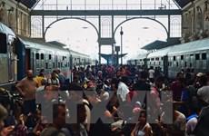 Đức, Áo sẵn sàng tiếp nhận hàng nghìn người di cư tại Hungary