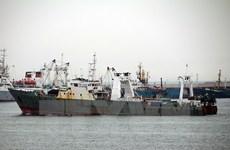 Lại lật tàu đánh cá ở Hàn Quốc, ít nhất 8 người thiệt mạng