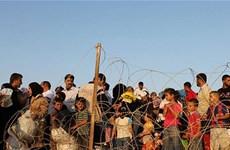 Các đội bóng Italy mở chiến dịch quyên góp giúp người tị nạn Syria