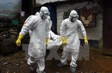 Thêm một trường hợp tử vong do virus Ebola tại Sierra Leone