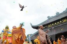 Việt Nam và châu Âu chia sẻ kinh nghiệm về tự do tôn giáo