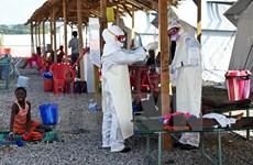 Sierra Leone không ghi nhận ca nhiễm Ebola nào trong 4 tuần