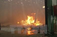 Bình Phước: Cháy lớn tại công ty gỗ, hàng trăm công nhân bỏ chạy