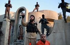 Australia: Số vụ án liên quan đến tài trợ khủng bố tăng mạnh