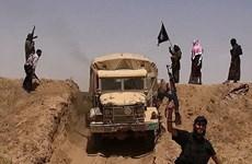 Iraq đề nghị Đức đẩy mạnh hỗ trợ nước này trong chống IS