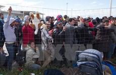 Tọa đàm Châu Âu trong khủng hoảng di cư và biện pháp đối phó