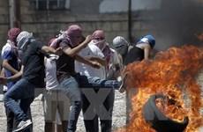 Indonesia đăng cai hội nghị quốc tế về xung đột Palestine-Israel