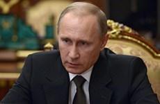 Tổng thống Nga tuyên bố sẵn sàng hàn gắn quan hệ với Gruzia