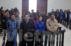 Quảng Ninh tuyên án vụ buôn lậu dầu diesel trị giá trên 168 tỷ đồng