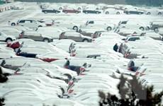 Trung Quốc đóng cửa đường cao tốc do thời tiết lạnh khắc nghiệt