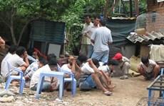 Tiền Giang: Triệt phá trường gà ở vườn sơ ri, bắt 54 đối tượng