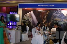 Việt Nam có nhiều điểm đẹp để các nhà làm phim Bollywood bấm máy