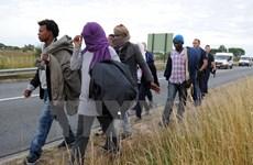 Đụng độ giữa cảnh sát Pháp và người di cư ở khu tị nạn trái phép