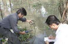 Báo động tình trạng đưa nước mặn vào vùng ngọt hóa để nuôi tôm