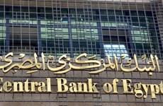 Ai Cập phá giá đồng nội tệ đối phó cuộc khủng hoảng ngoại hối