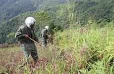 Điện Biên: Liên tiếp phát hiện đạn cối khi thi công kè suối