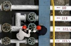 IEA: Giá dầu thế giới sẽ hồi phục cuối năm 2016 hoặc 2017