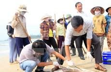 Sự kiện trong nước tuần 18-24/4: Cá chết bất thường ở Bắc Trung Bộ