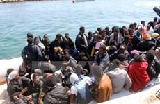 Hải quân Italy giải cứu gần 1.800 người di cư trên Địa Trung Hải
