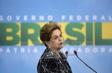 Thượng viện Brazil xem xét đình chỉ Tổng thống Dilma Rousseff