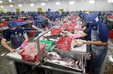 Giám đốc AmCham: TPP thúc đẩy Việt Nam tăng tốc hội nhập