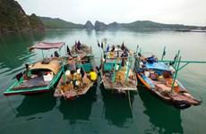 Vịnh Hạ Long vào tốp những bức ảnh du lịch đẹp nhất tuần