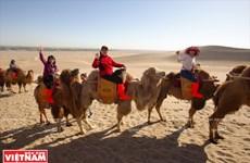 Cưỡi lạc đà giữa gió cát sa mạc Gobi - Trải nghiệm đáng nhớ