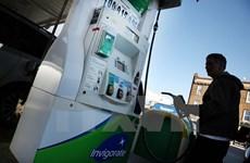 Thị trường dầu mỏ xác lập mức giá cao nhất kể từ đầu năm