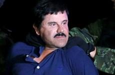 Trùm ma túy El Chapo chống lại quyết định dẫn độ sang Mỹ