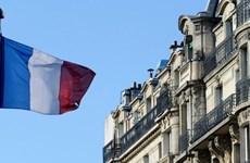 Ngân hàng Trung ương Đức và Pháp đều hạ dự báo tăng trưởng GDP