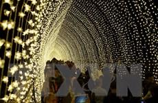 Lung linh, rực rỡ lễ hội ánh sáng thường niên tại Australia