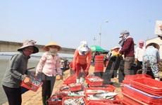 Thành phố Đà Nẵng kiểm tra chất lượng các mặt hàng thủy sản