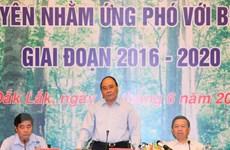 Thủ tướng: Đóng cửa rừng tự nhiên, nghiêm cấm phá rừng lấy đất