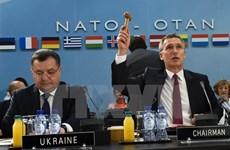 Không có khả năng NATO kết nạp Ukraine trong tương lai gần