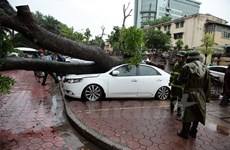 Thành phố Hà Nội khẩn trương chủ động ứng phó với bão số 3