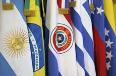 Paraguay triệu hồi đại sứ, đóng băng quan hệ với Venezuela