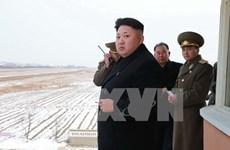 Hàn Quốc: Quan chức cấp cao Triều Tiên bỏ trốn do nội bộ bất ổn