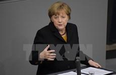 Các đảng của Đức bất đồng sâu sắc về chính sách người tị nạn