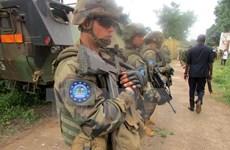 CH Trung Phi: Phiến quân tấn công ở miền Bắc, 26 người thiệt mạng