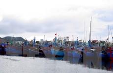 Thái Bình, Bình Định triển khai nhiều biện pháp ứng phó bão số 7