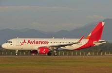 Hãng hàng không Avianca của Colombia ngừng bay tới Venezuela