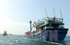 Quảng Trị khẩn trương tiếp cận cứu nạn tàu bị nạn trên biển