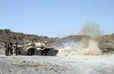 Yemen: Chính phủ và phe đối lập hoan nghênh đề xuất hòa bình LHQ