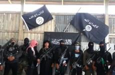 Giới chức Albania, Kosovo bắt giữ nhiều đối tượng liên quan tới IS