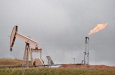 Venezuela và Tổ chức OPEC nỗ lực bình ổn giá dầu thế giới
