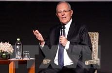 Khai mạc Hội nghị các Tổng giám đốc điều hành APEC tại Peru
