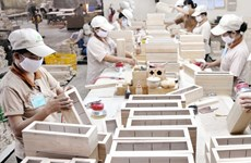 """Sự kiện trong nước 14-20/11: """"Giấy thông hành"""" cho gỗ Việt Nam vào EU"""