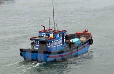 Đề nghị cho 29 tàu cá vào tránh bão tại Philippines và Indonesia