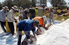 Xuất cấp 1.500 tấn muối ăn hỗ trợ dân vùng ngập tỉnh Hà Tĩnh